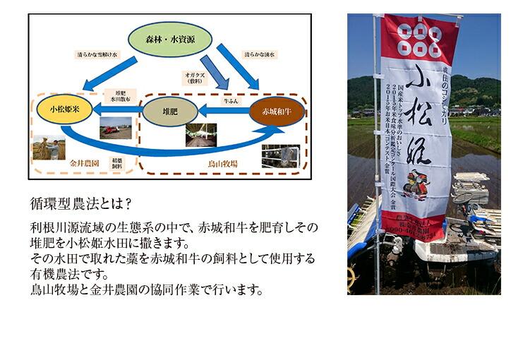 真田のコシヒカリ 小松姫米(プレミアム) 5kg 商品説明